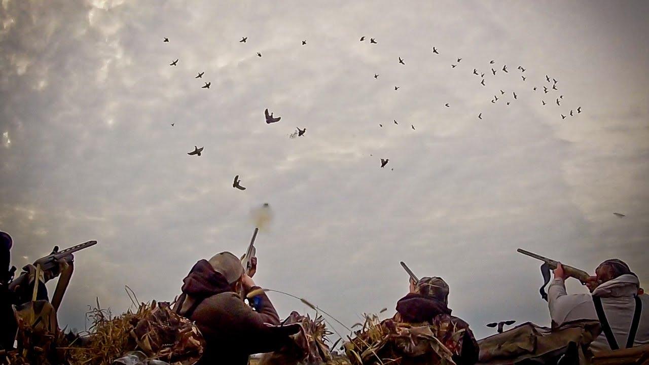 région de chasse maroc