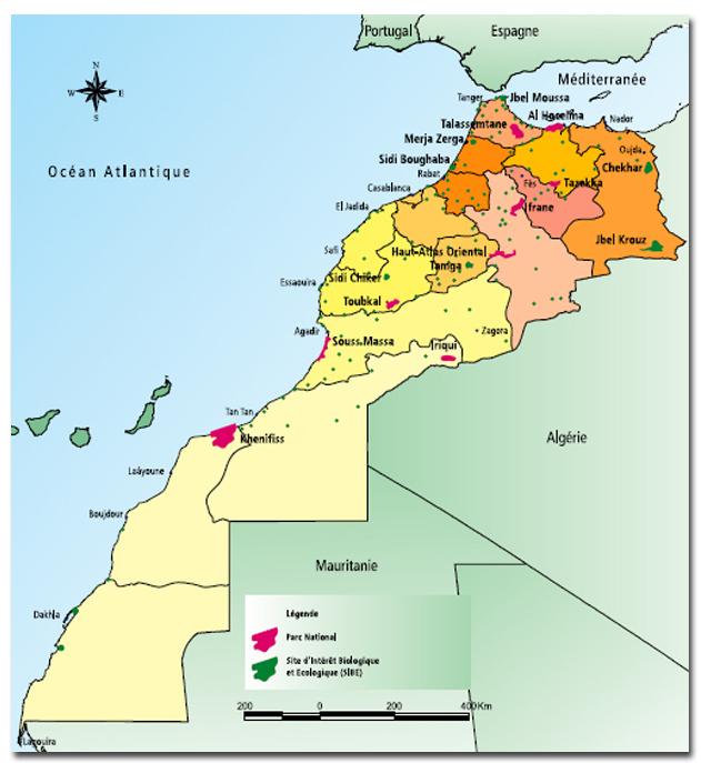 chasse au maroc